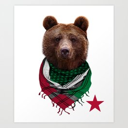California Republic Bear Men's and Women's T-Shirt Art Print