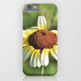 Margarite iPhone Case