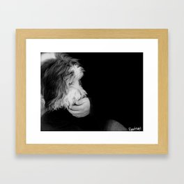 bandit 00 Framed Art Print