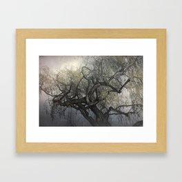 The Whispering Tree Framed Art Print