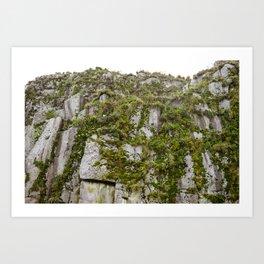 Cliffs with Sea Birds in Alaska Art Print