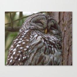 Happy Owl Canvas Print