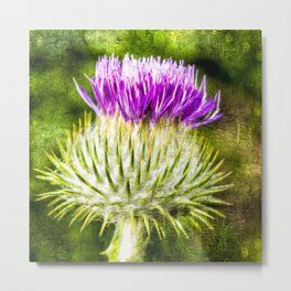 Flower of Scotland Oil Paint effect. Metal Print