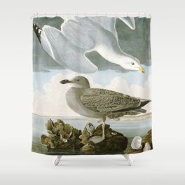 Seagulls Illustration - Birds in America Shower Curtain