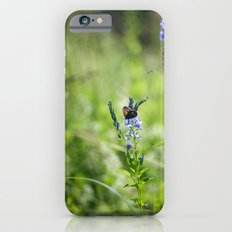Summer 3562 iPhone 6s Slim Case