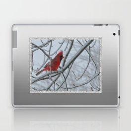 Redbird on Icy Tree Branch Laptop & iPad Skin