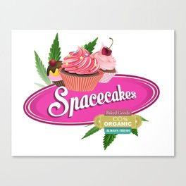 SpaceCakesPink Canvas Print