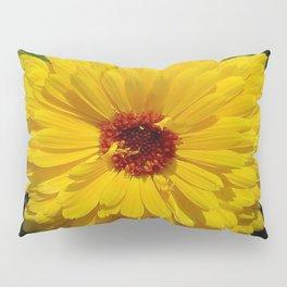 Holligold Blossoming Yellow Pot Marigold Flower  Pillow Sham