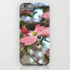 No matter how long the winter, spring is sure to follow.  ~Proverb Slim Case iPhone 6s