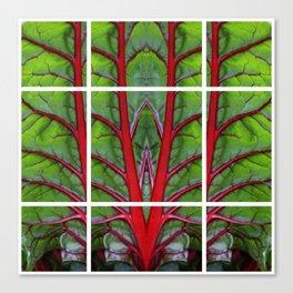 Swiss Chard - Leaf of Life Canvas Print