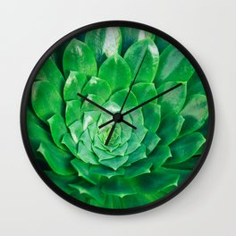 Botanical Gardens Succulent #686 Wall Clock
