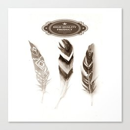 FeathErS in VintAGE Canvas Print