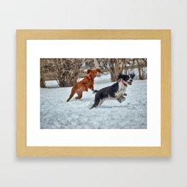 Jump And Run Framed Art Print