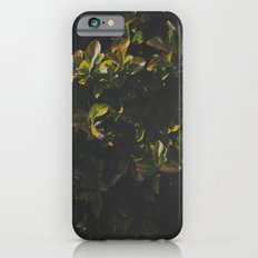 Foliage Slim Case iPhone 6s