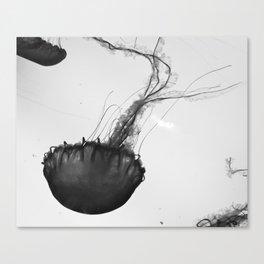 Jellyfish Silhouette  Canvas Print