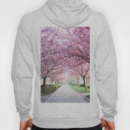 Sakura tree street Hoody