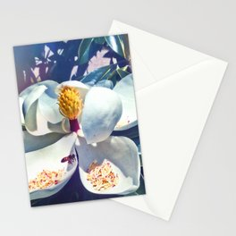 Magnolia Blossom and Bee Stationery Cards