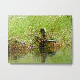 Swamp Chair Metal Print