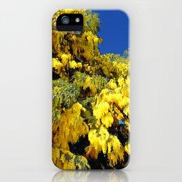 Australian Golden Wattle iPhone Case