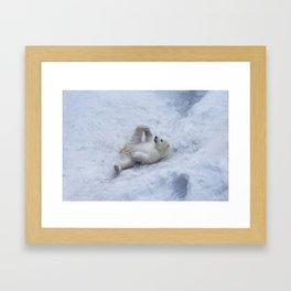Portrait of polar bear cub practicing yoga on the snow. Framed Art Print