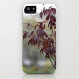 A dusting of snow iPhone Case