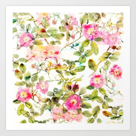 soft pink rosebush Art Print