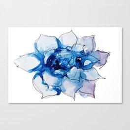 Blue Echeveria Succulent Canvas Print