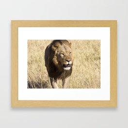 Looking for my Pride II Framed Art Print