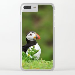Puffin from Ireland  (RR 238) Clear iPhone Case