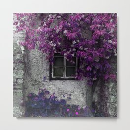 Bright Purple Vines, Window and Gray Stone Metal Print