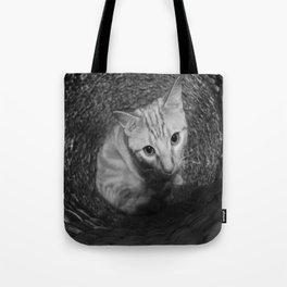 Basket Kitten 1 Tote Bag