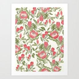 Protea Pattern Kunstdrucke