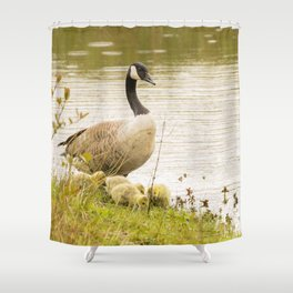 Nature wildlife family of ducks Shower Curtain