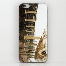 A winter crossing iPhone & iPod Skin