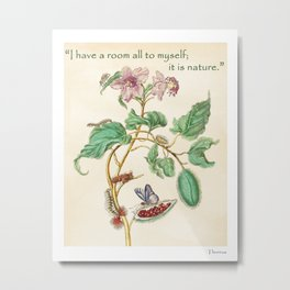 Floral watercolour with quote by Thoreau based on 17th century botanical illustration by Maria Merian  Metal Print