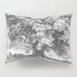 Linden Tree Print from 1800's Encyclopedia Pillow Sham