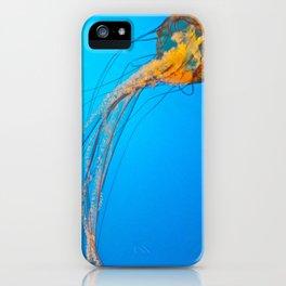 Animality: Jellyfish, Solo. iPhone Case