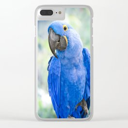 Beauty is an Enchanted Soul Clear iPhone Case