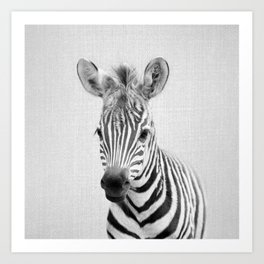 Baby Zebra - Black & White Art Print