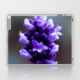 lavender flower Laptop & iPad Skin