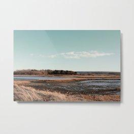 Drylands ∆ Metal Print