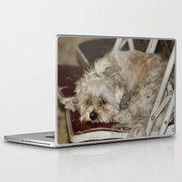 teddy bear Laptop & iPad Skins featuring Teddy Bear by IowaShots