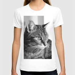 cat look T-shirt