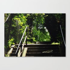A Brahms Type of Way Canvas Print