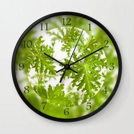 Pelargonium citrosum plant foliage macro Wall Clock