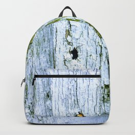 Weathered Barn Wall Wood Texture Backpack