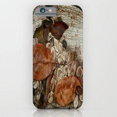 Remains Slim Case iPhone 6s