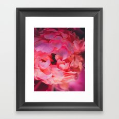 Love and the Peony Framed Art Print