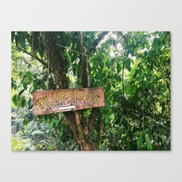 Blue River Sign in Tropical Rain Forest Canvas Print