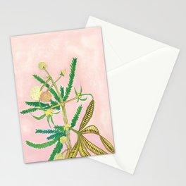 Klu (Acacia farnesiana) Stationery Cards